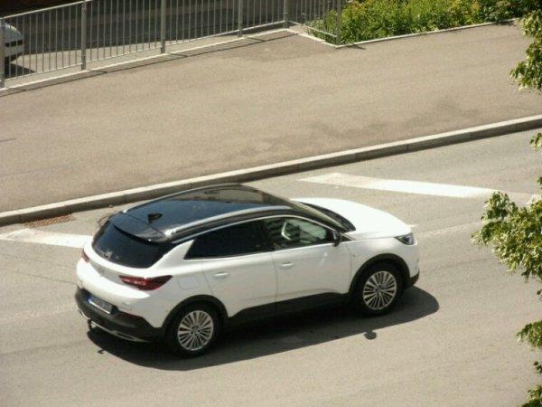 Opel grandland x en blanc