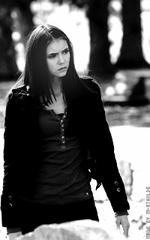 Comment va évoluer la relation Damon / Elena ?