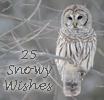 Photo de 25-Snowy-Wishes