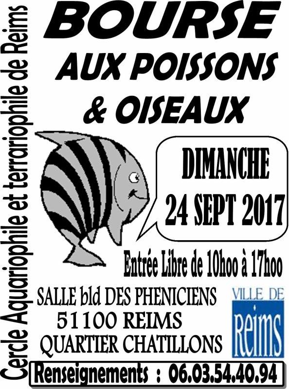 REIMS (51) - BOURSE aux POISSONS et OISEAUX  LE 24 SEPTEMBRE 2017