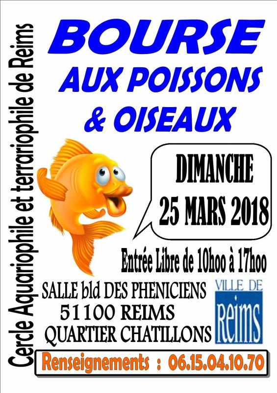 REIMS (51) - BOURSE aux POISSONS et OISEAUX  LE 25 Mars 2018