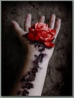Je vous laisse ma rose!!!!!!!