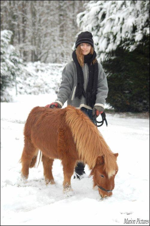 Un poney pas comme les autres.