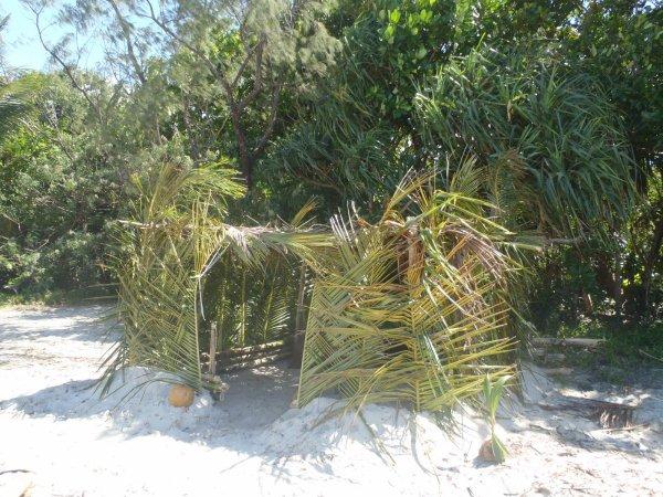 Chapitre 5 : île Déserte