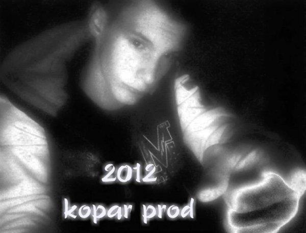 si c'était a refaire  / 2012 (2012)