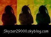 Instru Reggae / Skyzer au Synthé - Instrus reggea dub (2007)