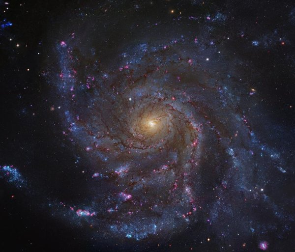 Galaxie spirale M101