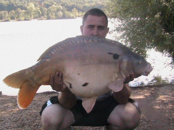 carpe miroir 15.5 kilos