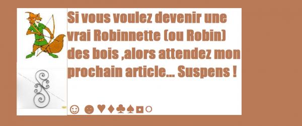 Vous voyez Vous en Robinnette ou Robin des Bois ?
