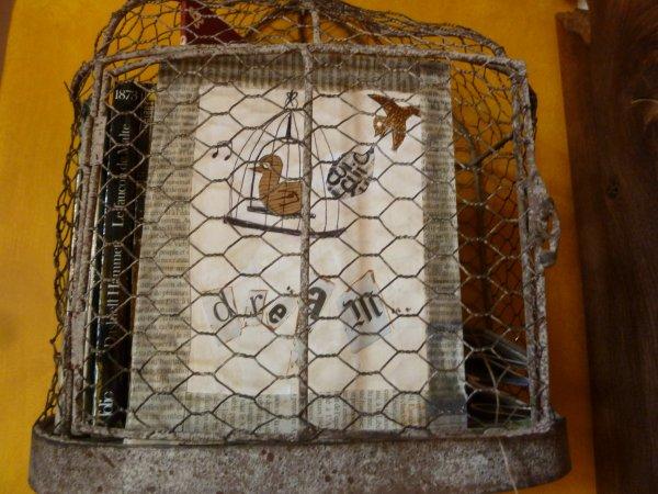 Cage à oiseaux et Oiseaux à cages ...