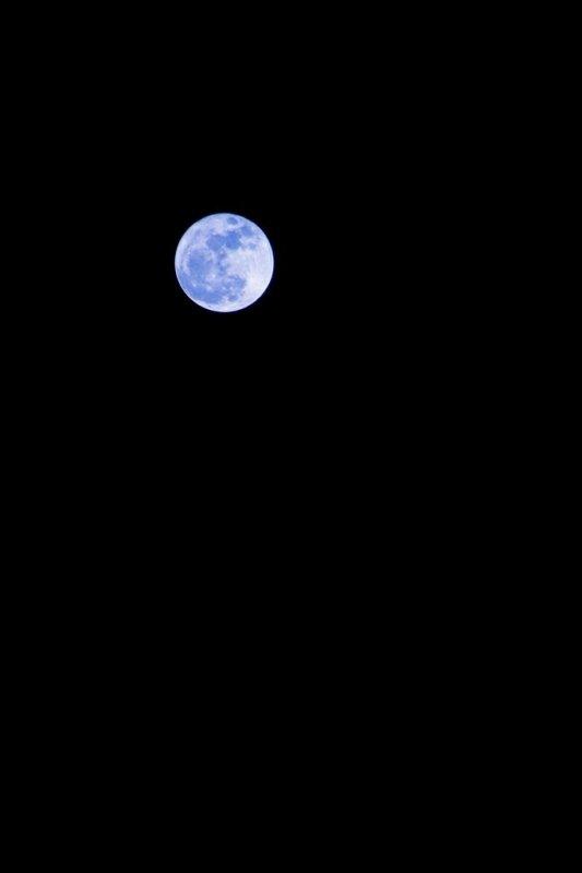 Regarde la lune, regarde comment elle brille pour toi