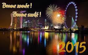 Bonne  Année  et Bonne Santé  2015