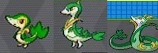 voici l'évolution de Tsutarja