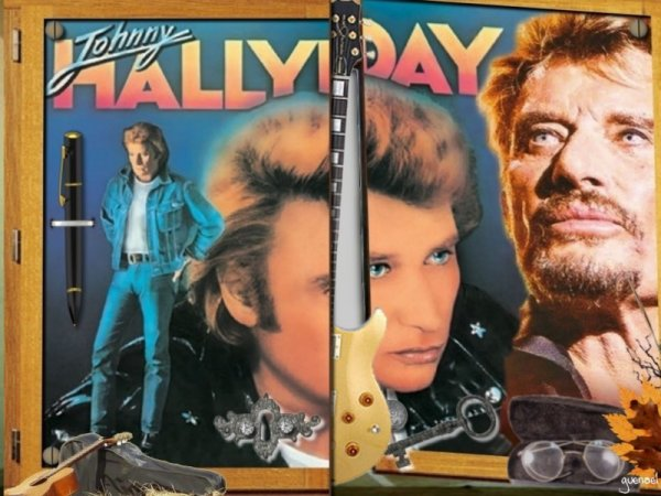 johnny-halliday