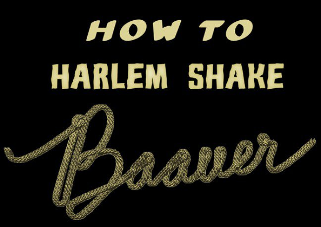 How to harlem shake !