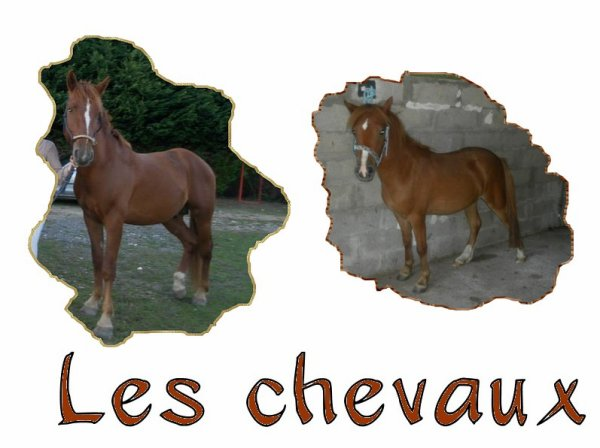 Nos chanceux