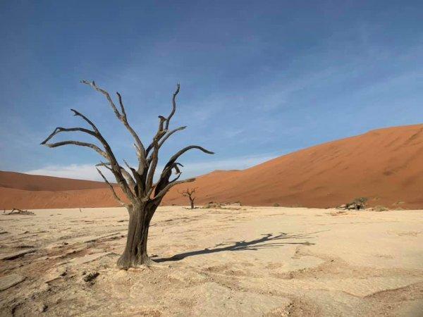 Rencontre autour du monde de l' Afrique