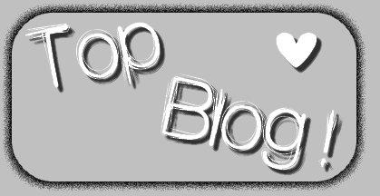 Top blog !