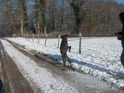j attrape la neige et j 'adore ca