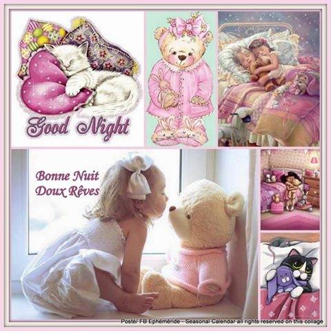 """Résultat de recherche d'images pour """"c'est l'heure de se dire bonne nuit"""""""