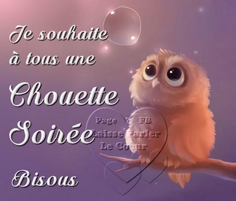 ~~(☼♥☼)~~ CHOUETTE ~~~~ c'est l'HEURE d'aller au DODO ~~~~ BONNE NUIT ~~(☼♥☼)~~