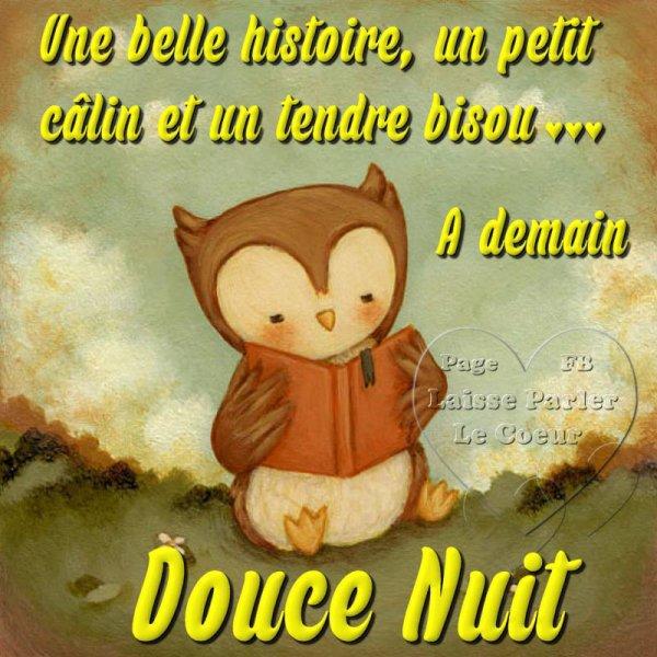 ~(☼♥☼)~ DOUCE NUIT ~ CHOUETTE NUIT ~ ESPOIR ~ VRAI ~ CALIN ~ A DEMAIN ~(☼♥☼)~