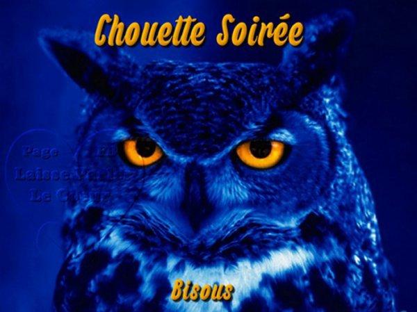 ~~~~ (^v^) ~~ CHOUETTE ~~ (^v^) ~~ CHOUETTE ~~ (^v^) ~~ CHOUETTE ~~ (^v^) ~~~~