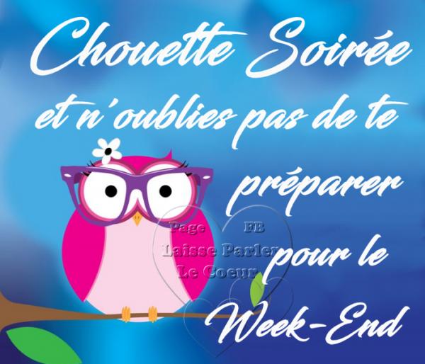(^v^) ~~ SOIREE ~~ (^v^) ~~ WEEK-END ~~ (^v^) ~~ NUIT ~~ (^v^) ~~ CHOUETTE ~~ (^v^)