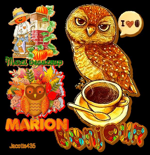 ☼♥☼ 13 OCTOBRE ☼♥☼ MERCI MARION ☼♥☼ pour tes ☼♥☼ Belles CRÉATIONS ☼♥☼  ☼♥☼ BONJOUR ☼♥☼