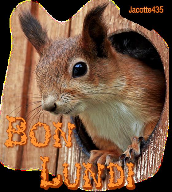 (^v^) CADEAUX pour TOI NUTSY (^v^) BONNE NUIT et BON LUNDI (^v^) http://nutsy7801.skyrock.com/