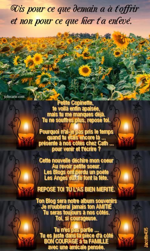 ~♥~ LA POÉSIE A PERDU UNE PLUME ~♥~ ~♥~  LES BLOGS ONT PERDU UNE POÉTESSE ~♥~ ~♥~ LES COPINETTES ONT PERDU UNE AMIE ~♥~ AU REVOIR REPOSE TOI DOMINIQUE ~♥~  ~♥~ Quelques extraits de ton Blog pour que tu sois à mes côtés ~♥~ http://domino.centerblog.net/