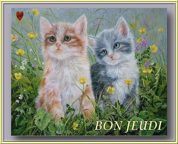 ~♥~(^v^)~♥~ CHAT VA BIEN, TOI ? ~♥~~♥~ BON JEUDI ~♥~~♥~ BELLE NUIT ~♥~(^v^)~♥~