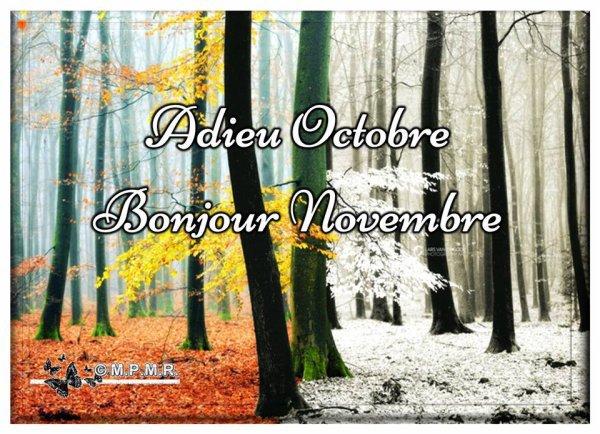~♥~ AU REVOIR OCTOBRE ~♥~ BONJOUR NOVEMBRE ~♥~ POÉSIE Fin d'Octobre ~♥~ MERCI SISSI ~♥~ http://poesieenhabit.centerblog.net/ ~♥~