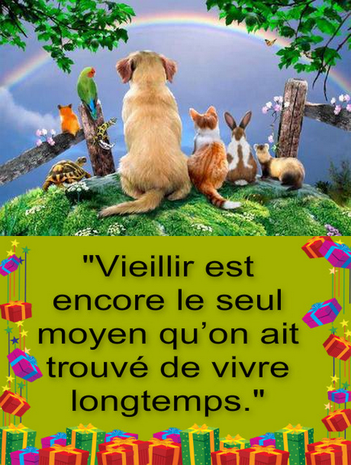 ~♥~ (^v^) BON ANNIVERSAIRE ~♥~ 25 ANS ~♥~ ANIMAUX-CITATIONS (^v^) ~♥~ http://animaux-citations.skyrock.com/