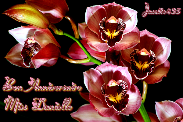 ♥♫♥ (☼♥☼) ♥♫♥ BON ANNIVERSAIRE ♥♫♥ MISS DANIELLE ♥♫♥ (☼♥☼) ♥♫♥