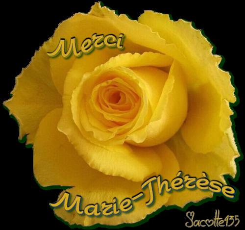 (☼♥☼) BALADE CHEZ TOI CETTE NUIT (☼♥☼) rencontré de CHOUETTES AMIES (☼♥☼) (☼♥☼) MERCI (☼♥☼) MARIE-THÉRÈSE (☼♥☼) http://capucine55500.skyrock.com/