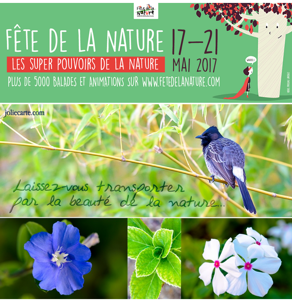 ~♥~ ☼ MANIFESTATION ☼ ♫ DU 17 ♫ ☼ AU 21 MAI ☼ ♫ FÊTE ♫ ☼ DE LA NATURE ☼ ~♥~  ~♥~  50 BOUGIES  ~♥~  POUR LES PARCS  ~♥~  NATURELS RÉGIONAUX  ~♥~ DE FRANCE ~♥~ ~♥~ http://www.fetedelanature.com/ ~♥~