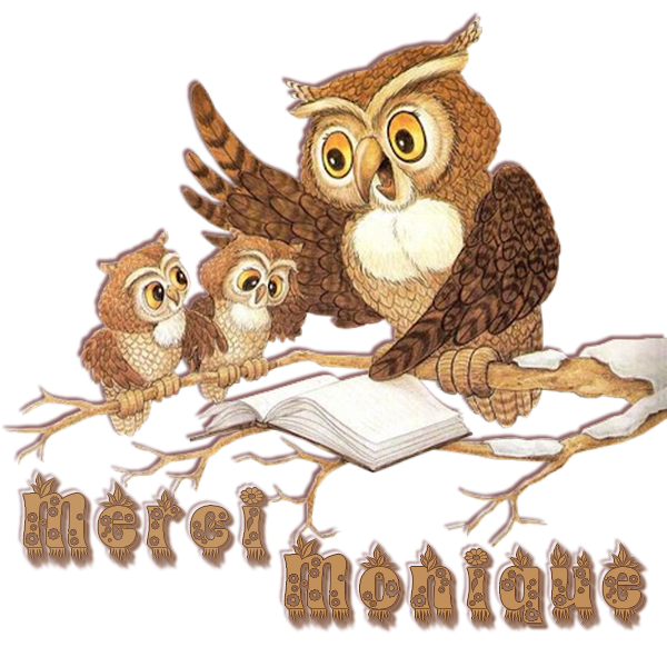 SPÉCIAL ...... OWLS de MONIQUE pour JACOTTE