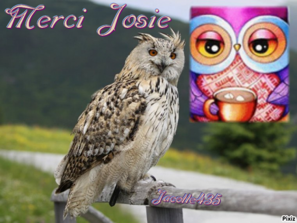 ~♥~ ♫ ☼ CUEILLETTE ~♥~ MERCI JOSIE ~♥~ MERCI ~♥~ MON PANIER est REMPLI ☼ ♫ ~♥~ ~♥~ http://josie2arles.skyrock.com/ ~♥~