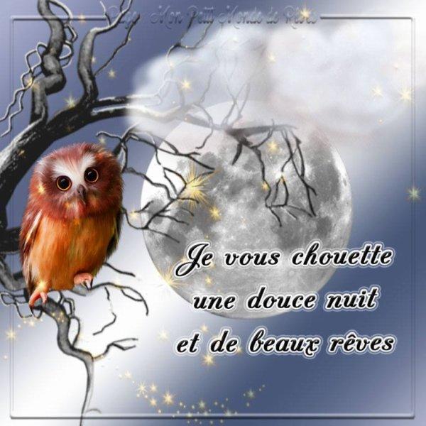 (☼♥☼) ~♥~ CADEAUX DE JOSIE ~♥♫♥~ CHOUETTES & HIBOUX ~♥♫♥~ MERCI ~♥~ (☼♥☼)  (☼♥☼) http://josie2arles.skyrock.com/ (☼♥☼)