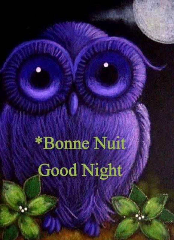 (☼♥☼) 19 NOVEMBRE ♥ EN ATTENDANT NOËL ♥ BELLE SOIRÉE ♥ BONNE NUIT (☼♥☼)