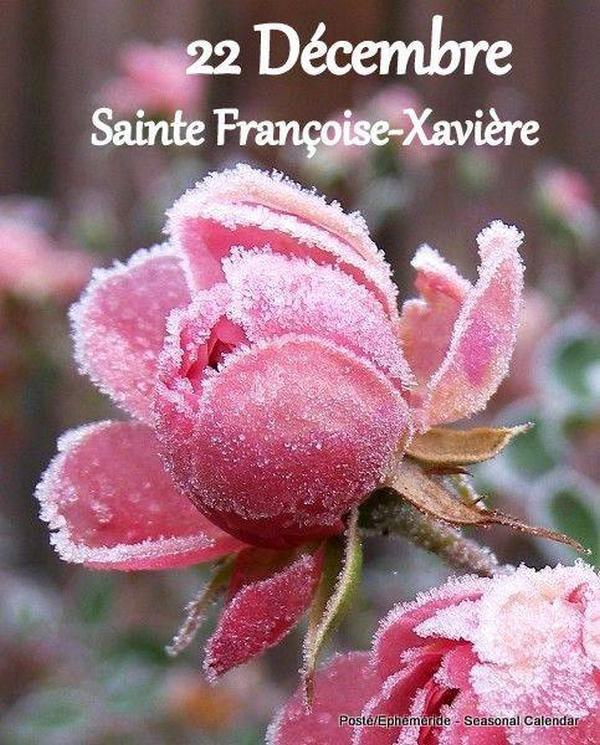 (☼♥☼) ♥♫ 22 DÉCEMBRE ♫♥ CALENDRIER DE L'AVENT ♥ St FRANCOIS-XAVIER ♫♥ (☼♥☼)