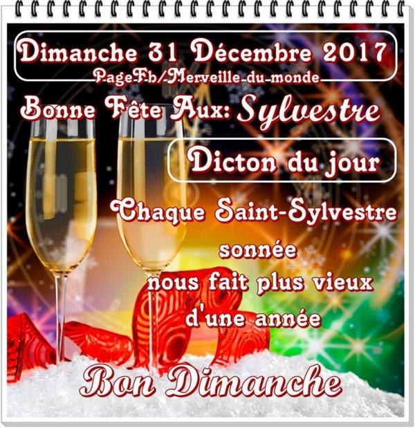 ♥♫♥ 31 DÉCEMBRE ~♥~ St SYLVESTRE ~♥~ BONNE SOIRÉE ~♥~ BON RÉVEILLON ♥♫♥
