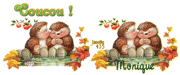 ~♥~ DES HÉRISSONS ESPIÈGLES ~♥~ POUR TOI ~♥~ MON AMIE MONIQUE ~♥~