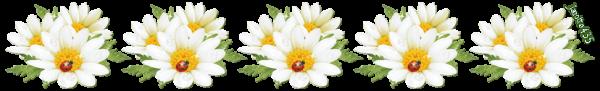 ♥♫♥ BONNE NUIT ♫ CHAT CHOUETTE HIBOU ♫ 12 JANVIER ♫ Ste MARGUERITE ♥♫♥