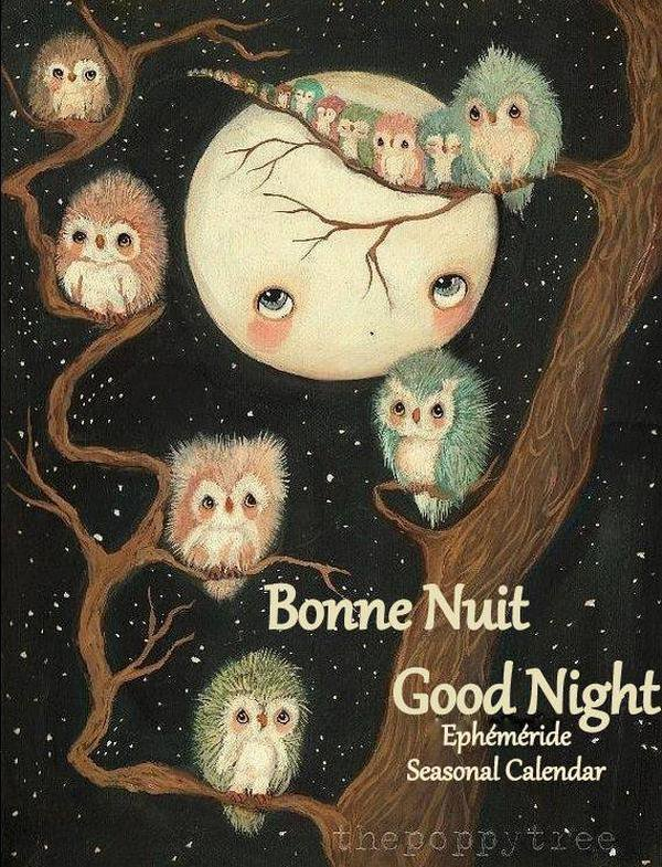 (☼♥☼) ♥♫♥ BONNE SOIRÉE ♥ BONNE NUIT ♥ BON LUNDI ♥ 15 JANVIER ♥♫♥ (☼♥☼)