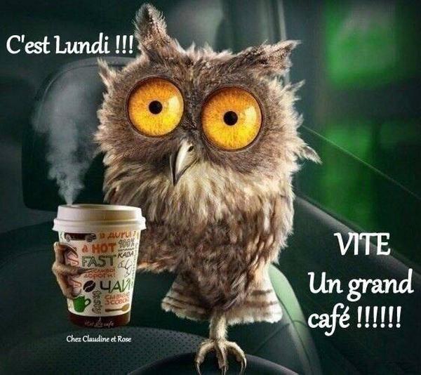 ♫ BONNE NUIT (☼♥☼) CHOUETTE LUNDI & DÉBUT de SEMAINE (☼♥☼) Un Ptit CAFÉ ? ♫