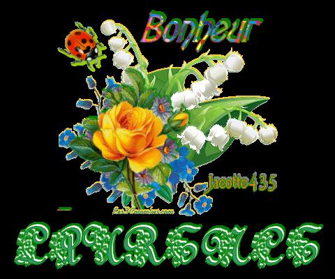 ~♥~ ♫ ☼ MERCI LAURENCE (☼♥☼) pour ton CADEAU HARFANG BISOU CHIEN ☼ ♫ ~♥~  ~♥~ http://savoir-aimer59.skyrock.com ~♥~