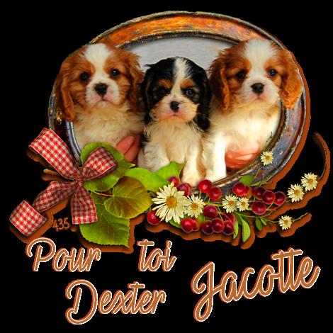 ♥♫♥ MAI ♥ AU REVOIR ♥ GENTIL DEXTER ♥♫♥ PETITES SIGNATURES pour ROMANE ♥♫♥ ♥♫♥ ♥ http://oo-petite-fleur-bleue-oo.skyrock.com/ ♥ ♥♫♥