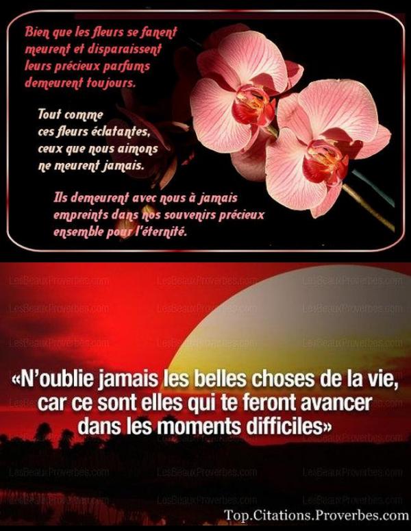 ♥ 26 JUIN ♥ VOEUX de TENDRESSE ♥ pour l'ANNIVERSAIRE ♥ de ton PAPA LAURENCE ♥ ♥♫♥ http://savoir-aimer59.skyrock.com/ ♥♫♥